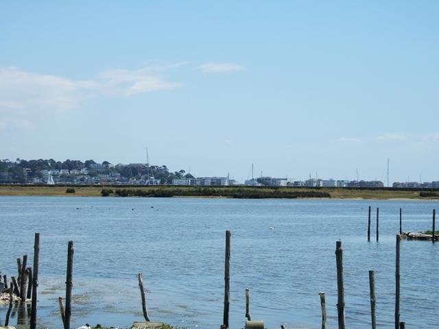 The lagoon, Brownsea Island