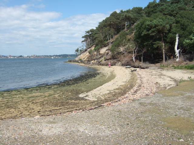 Beach north of Pottery Pier, Brownsea Island