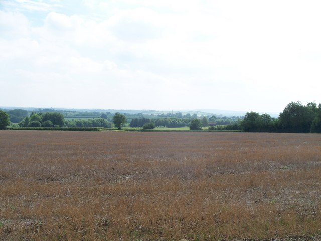 Farmland and view