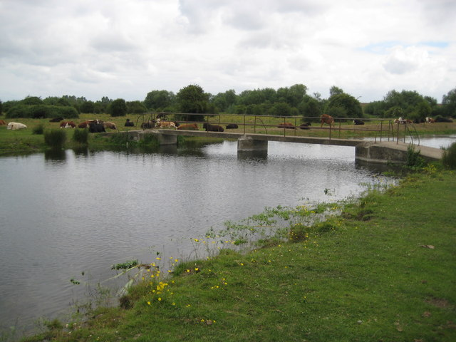 River Colne: Staines Moor footbridge