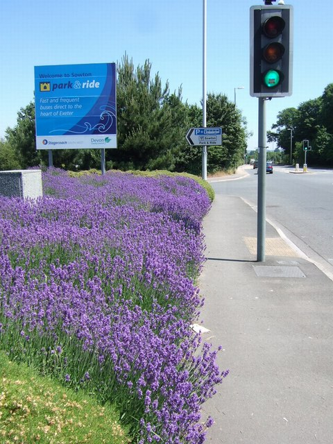 Lavender, Sidmouth Road, Exeter
