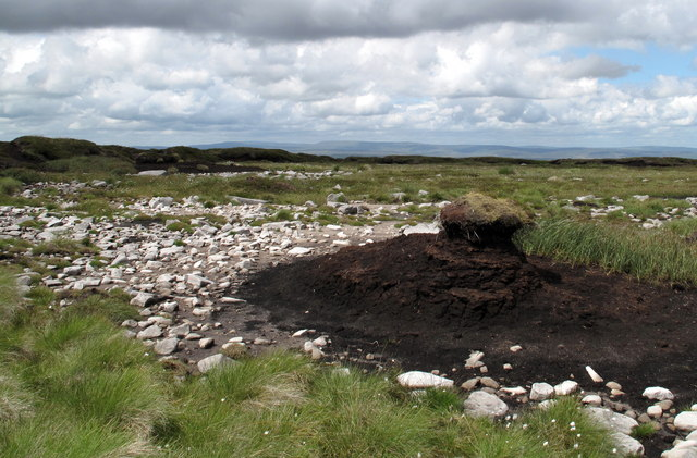 Peat Pillar and Stoniness Near Summit of Water Crag