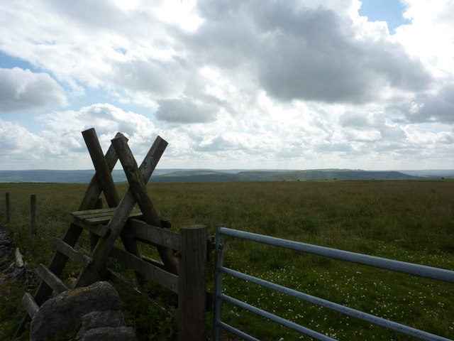 Gate and ladder stile, Bradwell Moor
