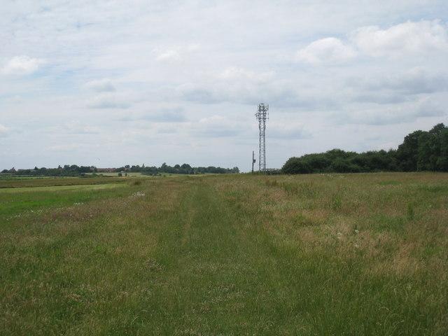 Mast close to Long's Plantation