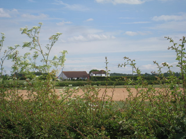 Blackmires Farm
