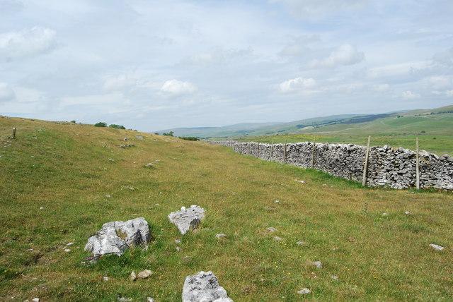 Boundary stone dyke or ring stone dyke