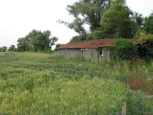 Derelict Shed near Honeywood Farm