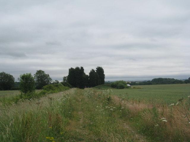 Footpath to Stubton Gorse