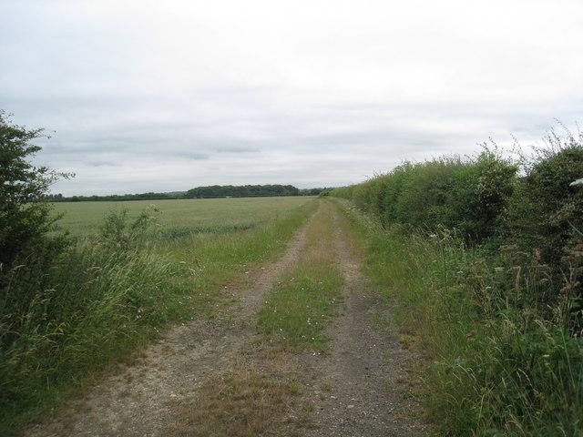 Track to Stubton Gorse