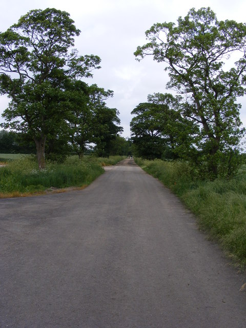 Bridleway by Searson's Farm