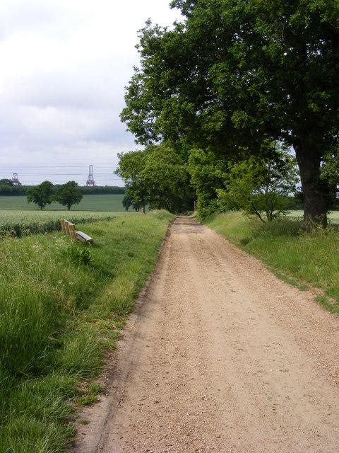 Bridleway between Searson's Farm and Christmasyards Wood