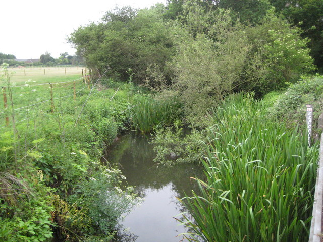 The Cut in Binfield