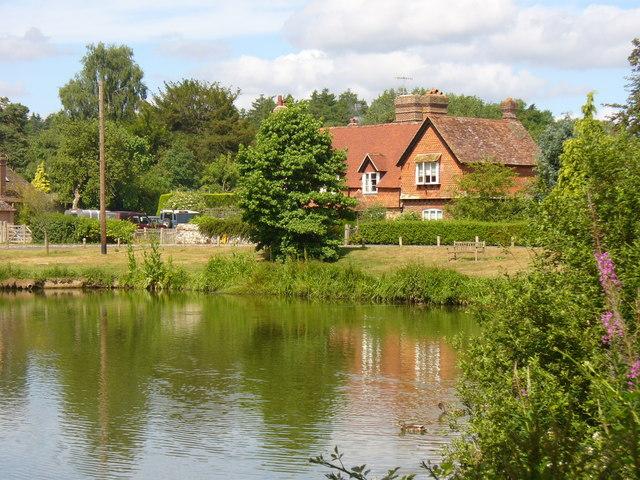 Village Pond, Hascombe