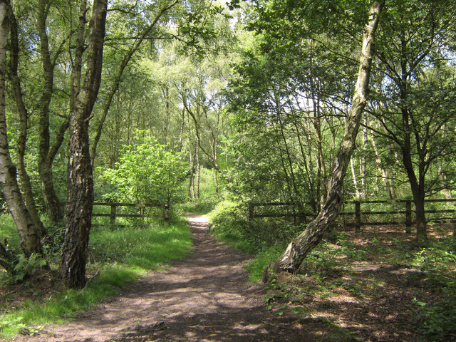 North-west on the bridle-path
