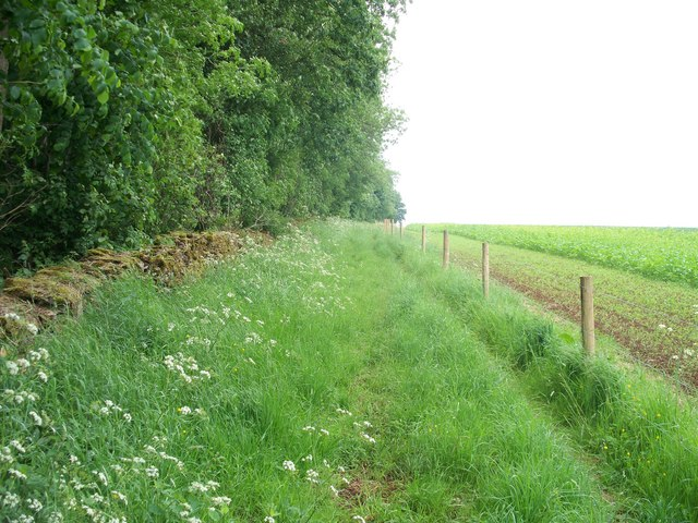 Bridleway to Snowshill