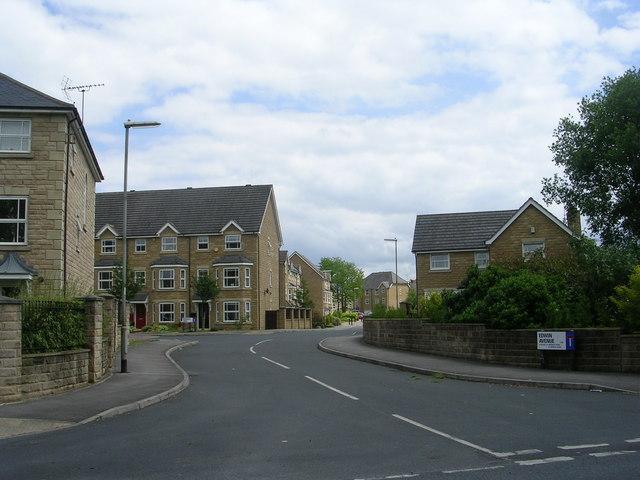 Edwin Avenue - Back Lane