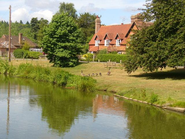 Hascombe, Village Pond