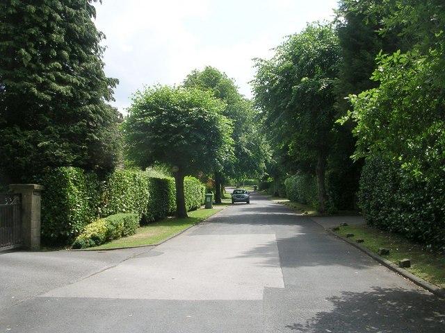 Esholt Avenue - Park Road