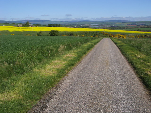 Road to Mill of Garvock