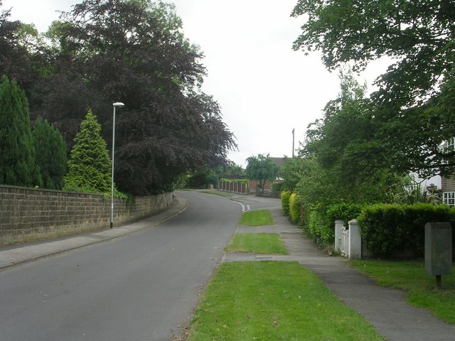 Old Hollings Hill - Park Road