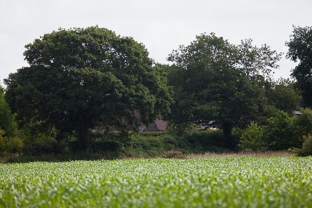 Warren Farm seen from Highwood Lane