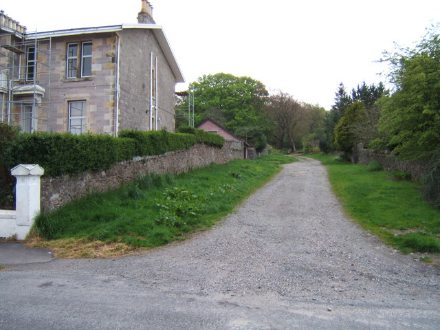 Track into Bogany Wood