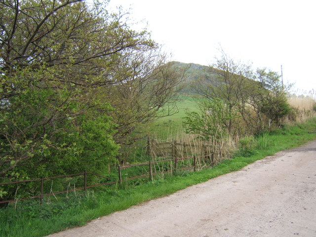 Track to Garrochty Farm