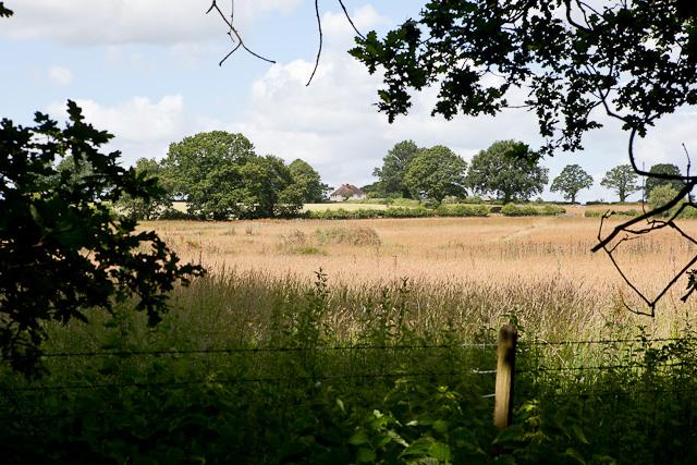 Warren Farm from Baddesley Common