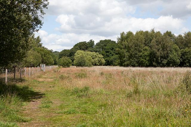 Footpath on Baddesley Common