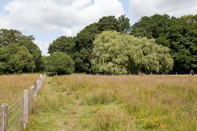 Footpath past Emer Farm