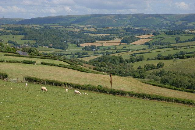 Fields by Bwlchyfan