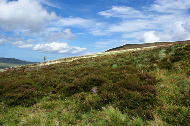 Moel Eilio's defence is trackless heather