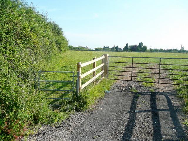 Pasture near Lawn Farm