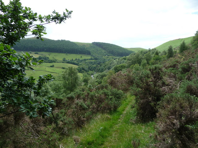 Footpath above the Mynach valley in early July