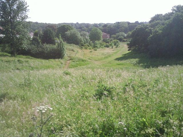 Eastern edge of East Wickham Open Space