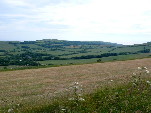 Purbeck Hills at Lutton Gwyle