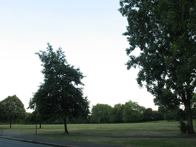 Wandsworth Common on a summer evening