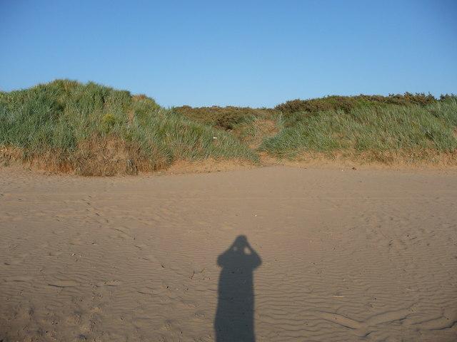 Brean : Brean Beach Sand Dunes