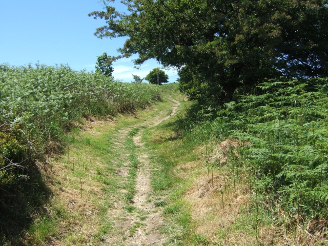 Footpath to north of Hardy Monument