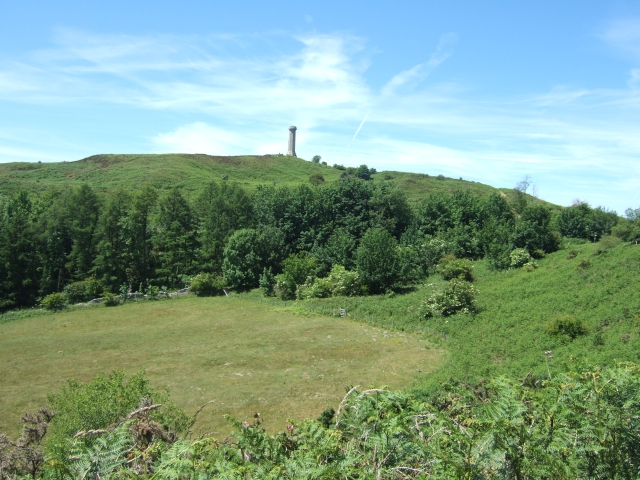 Hardy Monument from east