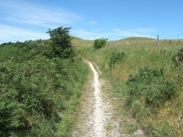 Path near Hardy Monument