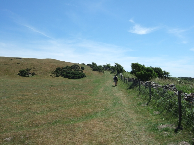 Bronkham Hill