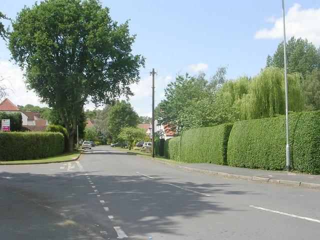 New Way - Bradford Road