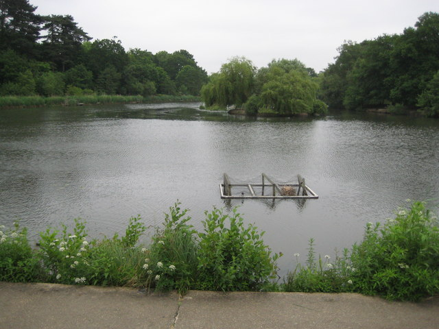 Bracknell Mill Pond