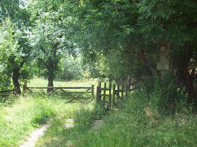 Public Footpath near Woodhouse Farm
