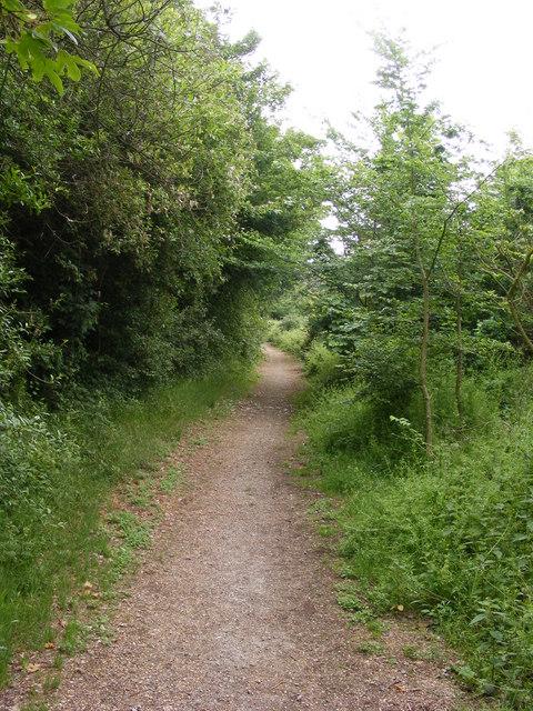 Bridleway near Fagbury Cliff Viewpoint