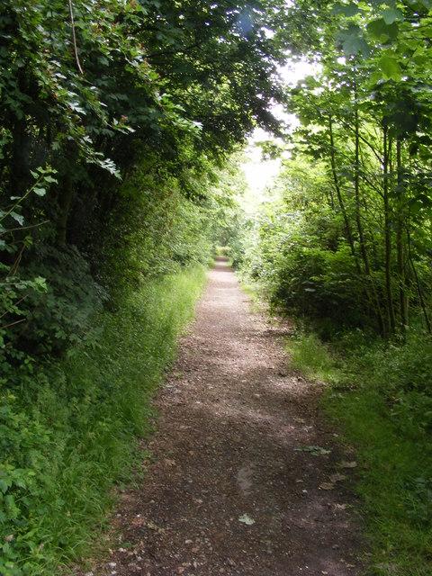 Bridleway along Fagbury Cliff