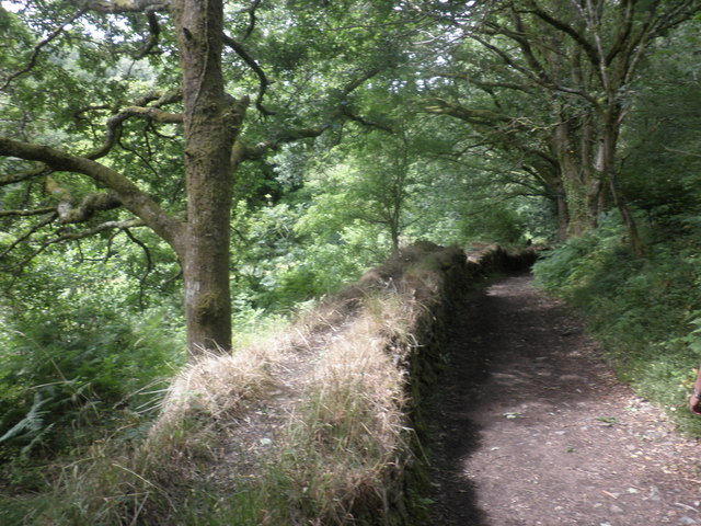 The Tarka trail, south of Okehampton