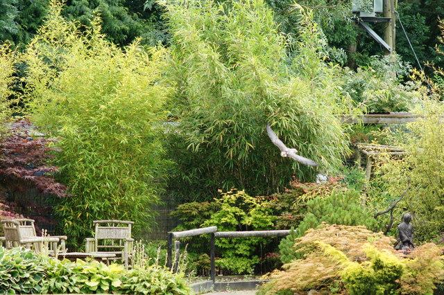 Huxley's Birds of Prey Centre, Horsham, Sussex
