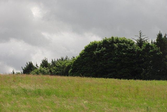 Simonton's Hill